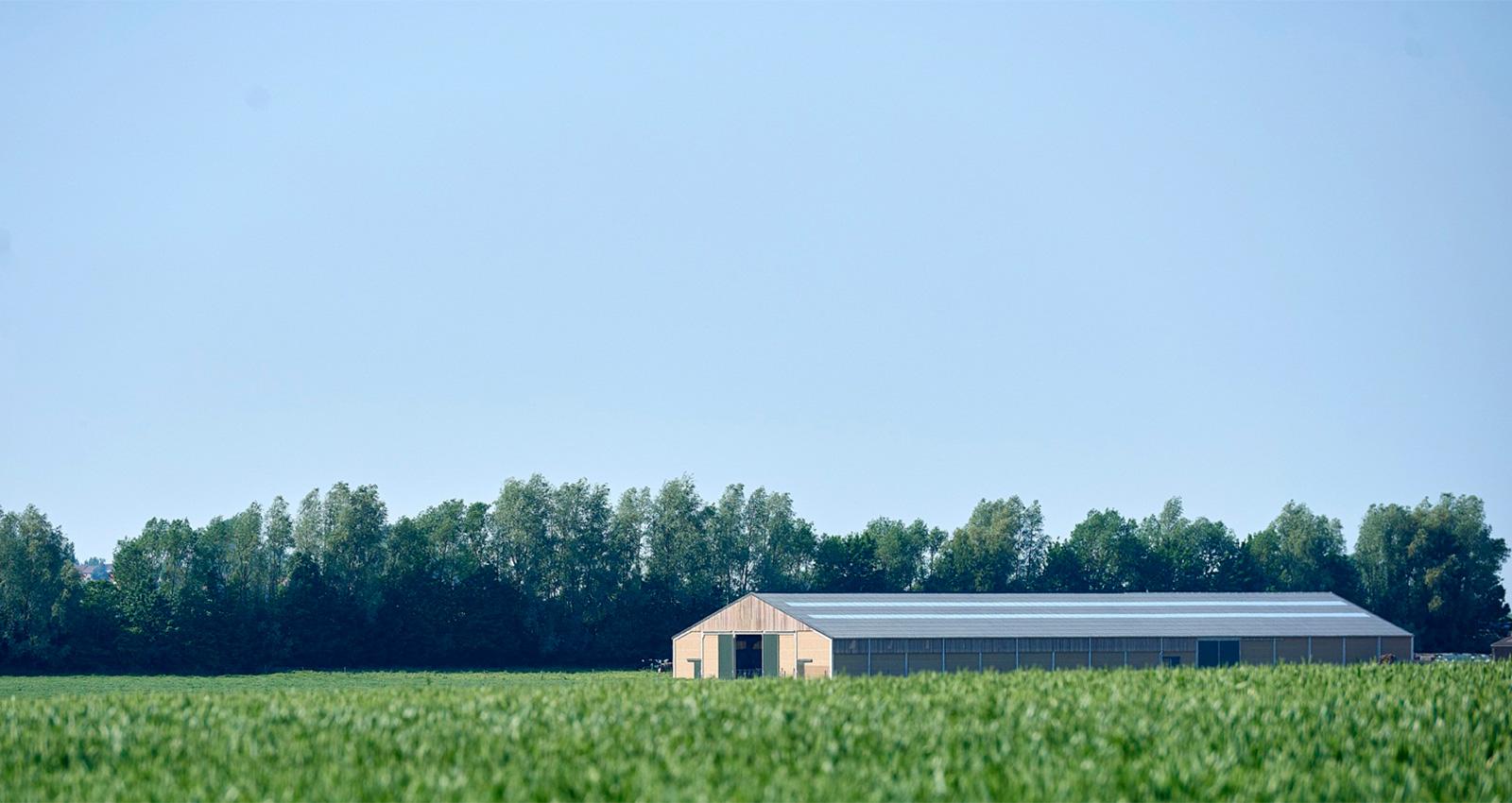 Landbouw01